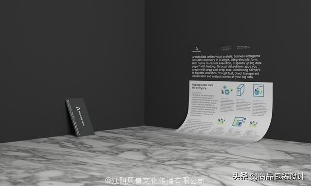 Arcadia Data Rebrand品牌设计